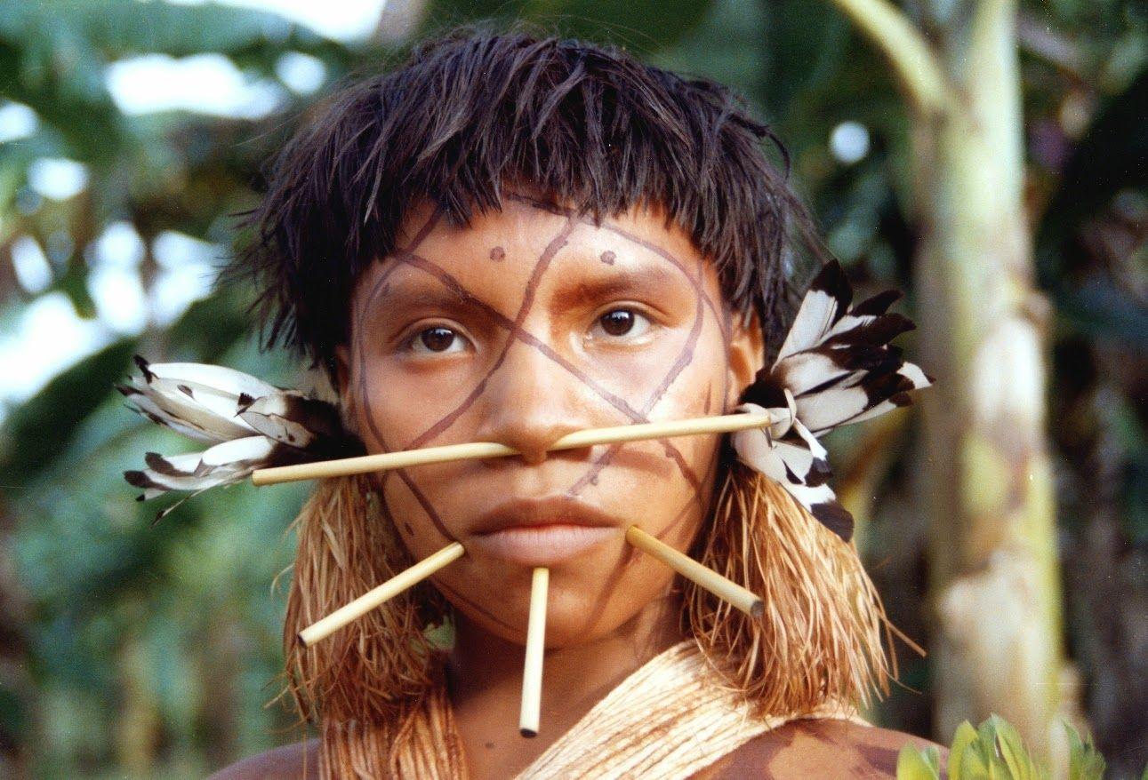значит, племя амазонок картинки алкоголика это печень